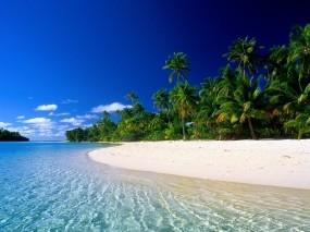 Обои Остров Кука: Пальмы, Волны, Остров, Берег, Природа