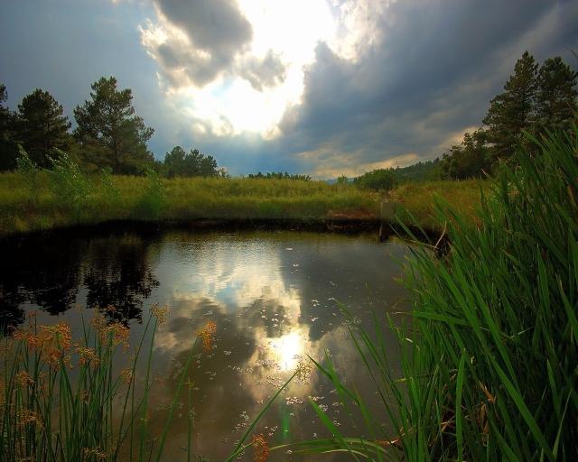 Пасмурное озеро