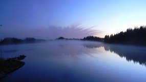 Обои Небо в озере: Отражение, Деревья, Туман, Озеро, Небо, Вода и небо
