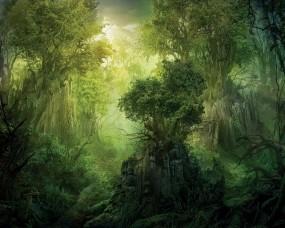 Обои Лес: Лес, Деревья, Зелёный, Природа
