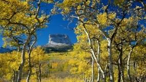 Обои Mount Chief Glacier National Park Montana: Деревья, Осень, Небо, Скала, Природа