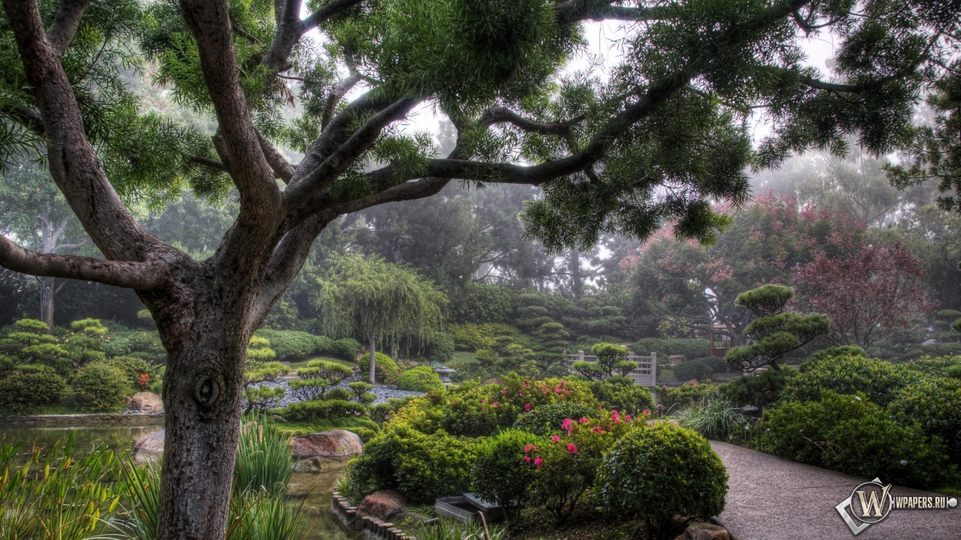 Обои японский сад деревья сад
