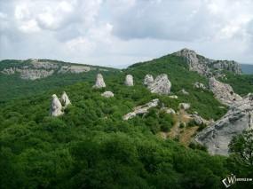 Обои Каменный цветок - Крым: Горы, Природа, Заросли, Природа