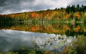 Обои Осенний пруд: Отражение, Вода, Лес, Деревья, Осень, Осень