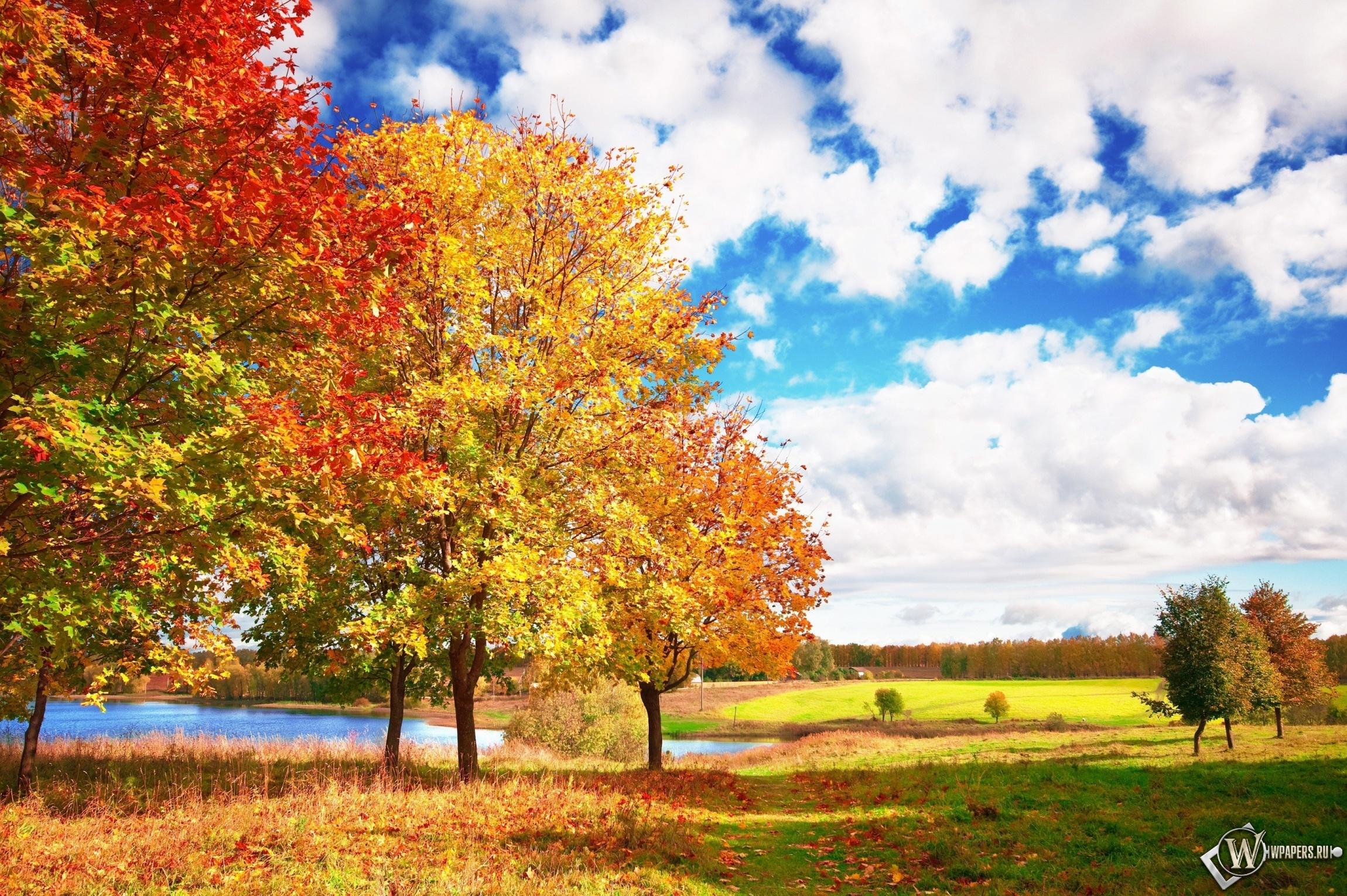 Осенние мотивы 2300x1530
