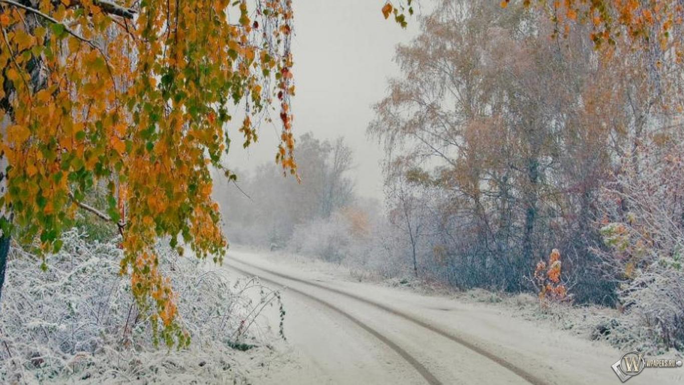 Природа осень на рабочий стол