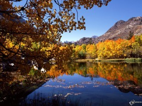 Обои Осеннее озеро: , Осень