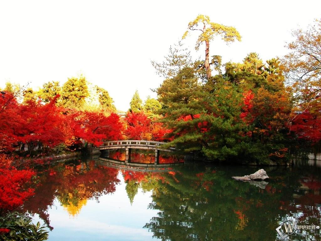Осенний пруд 1024x768