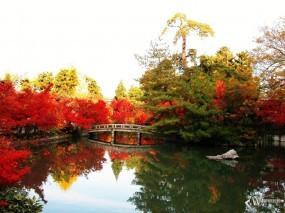 Обои Осенний пруд: , Осень