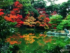 Обои Парк осенью: , Осень