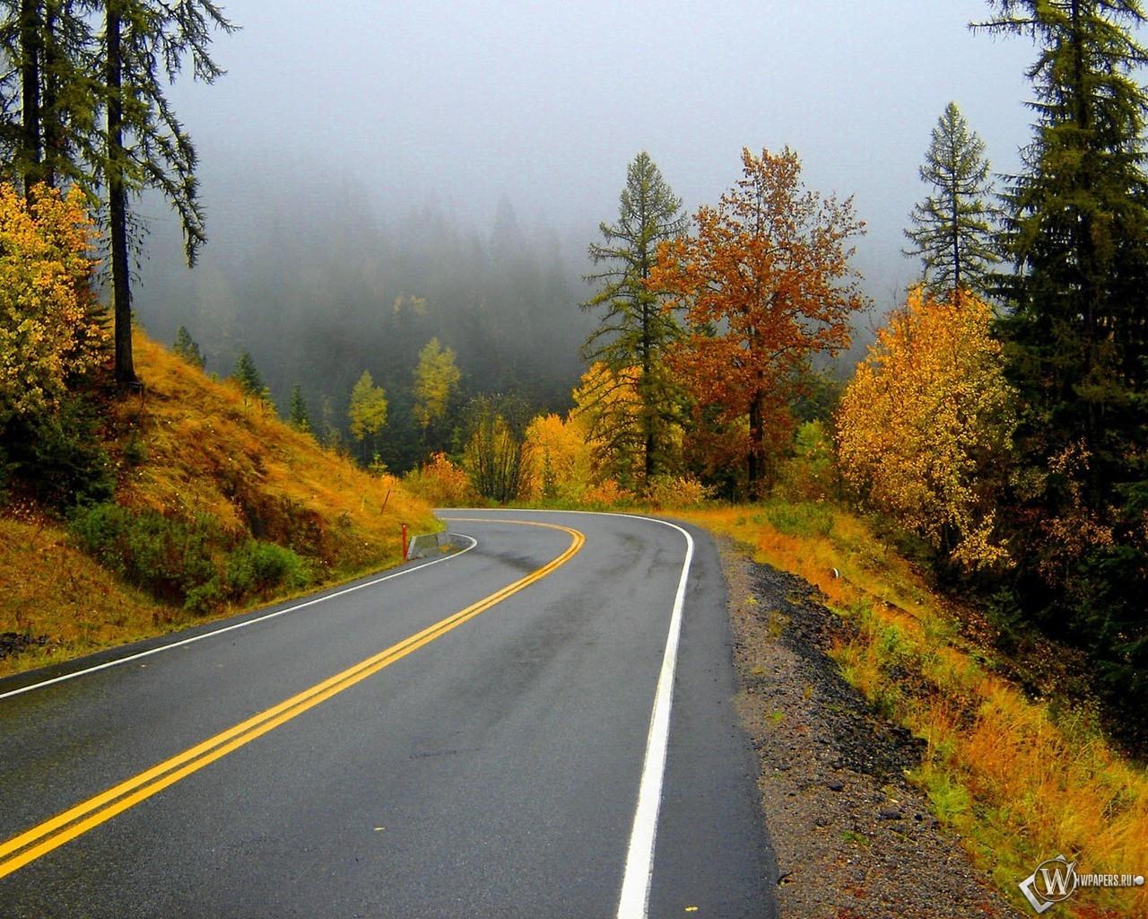 Трасса вдоль осеннего леса 1280x1024