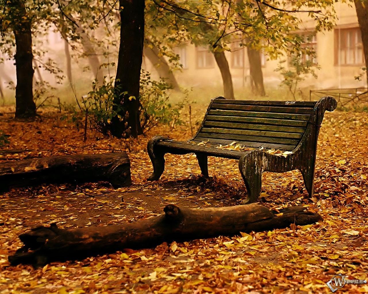 Пришла осень... 1280x1024