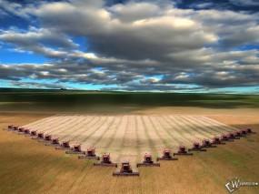 Обои Сборы урожая : Поля, Пшеница, Комбайн, Зерно, Осень