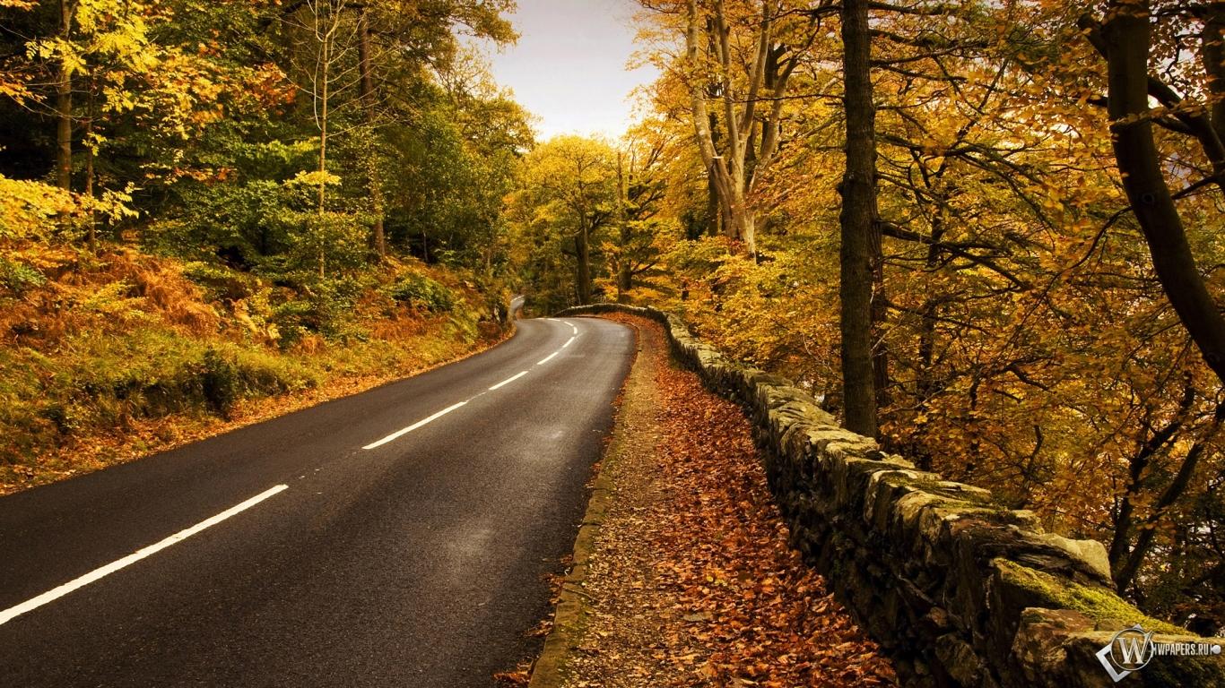 Осенняя природа обои для рабочего стола