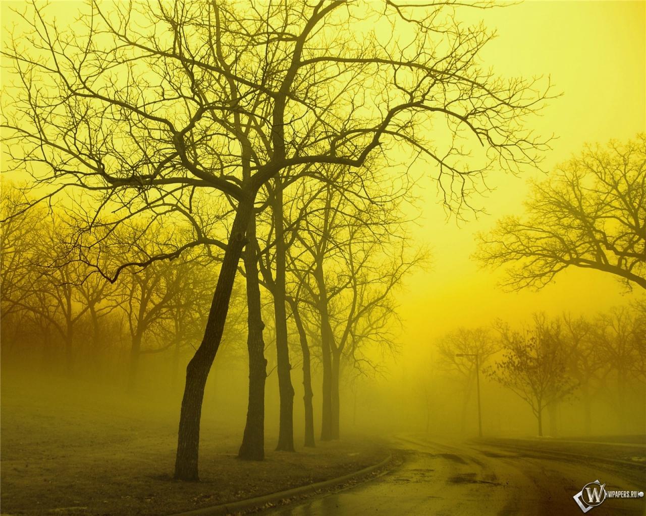 Обоев 82 осень обоев 112 осенний лес