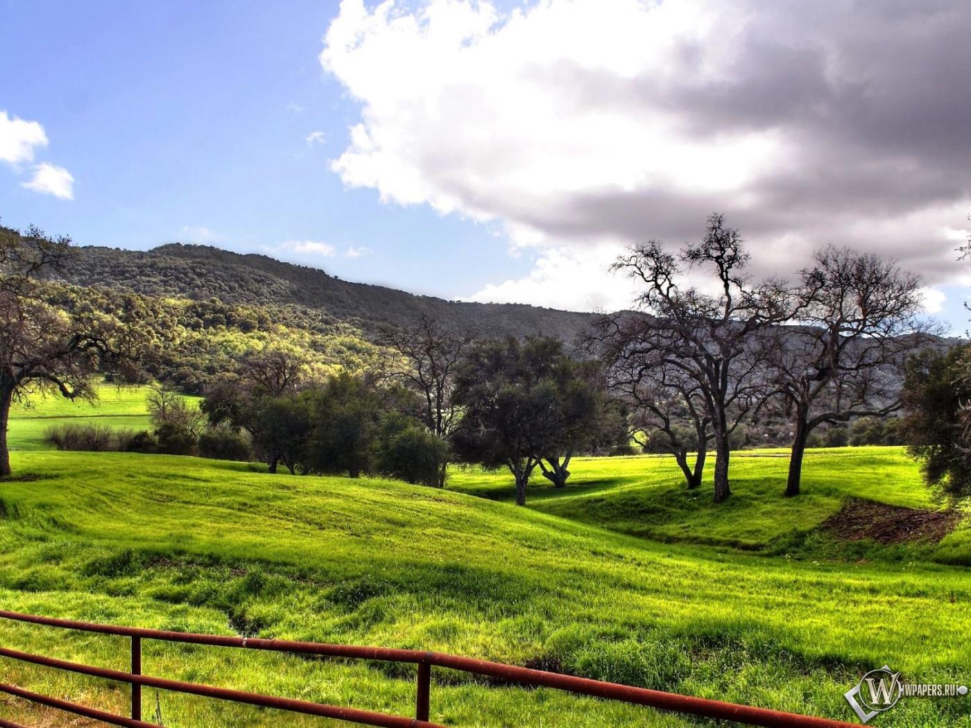 Обои красивый осенний пейзаж деревья