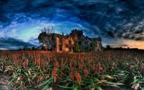 Обои Заброшенный дом: Поле, Ферма, Дом, Хижина, Прочие пейзажи