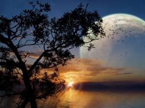 Обои Fantasy sunset: Море, Восход, Дерево, Прочие пейзажи