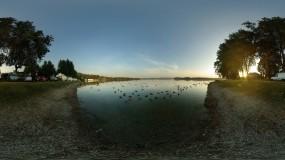 Обои Озеро: Деревья, Озеро, Утки, Машины, Прочие пейзажи