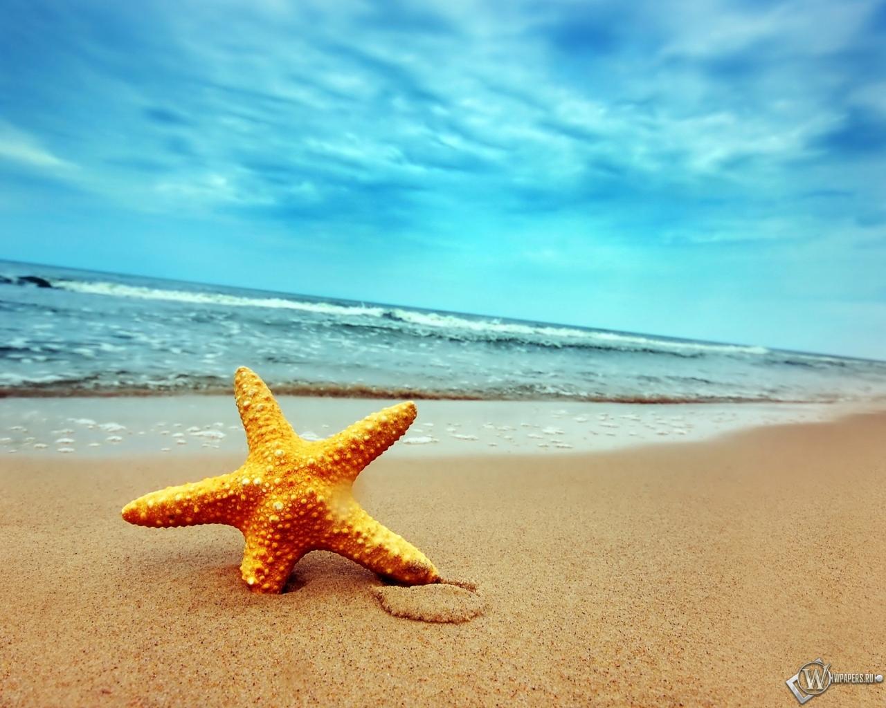 летние пляжи обои на рабочий стол № 491154  скачать