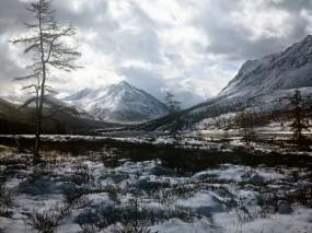 Обои Натуральные краски природы: Зима, Снег, Дерево, Прочие пейзажи