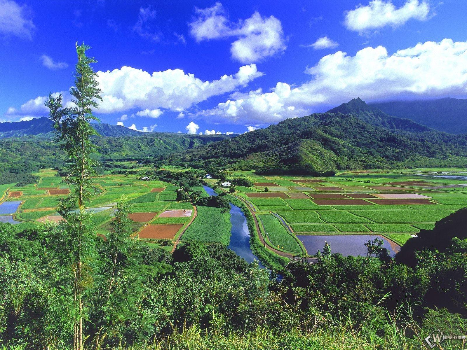 Обои гавайские острова горы посадка