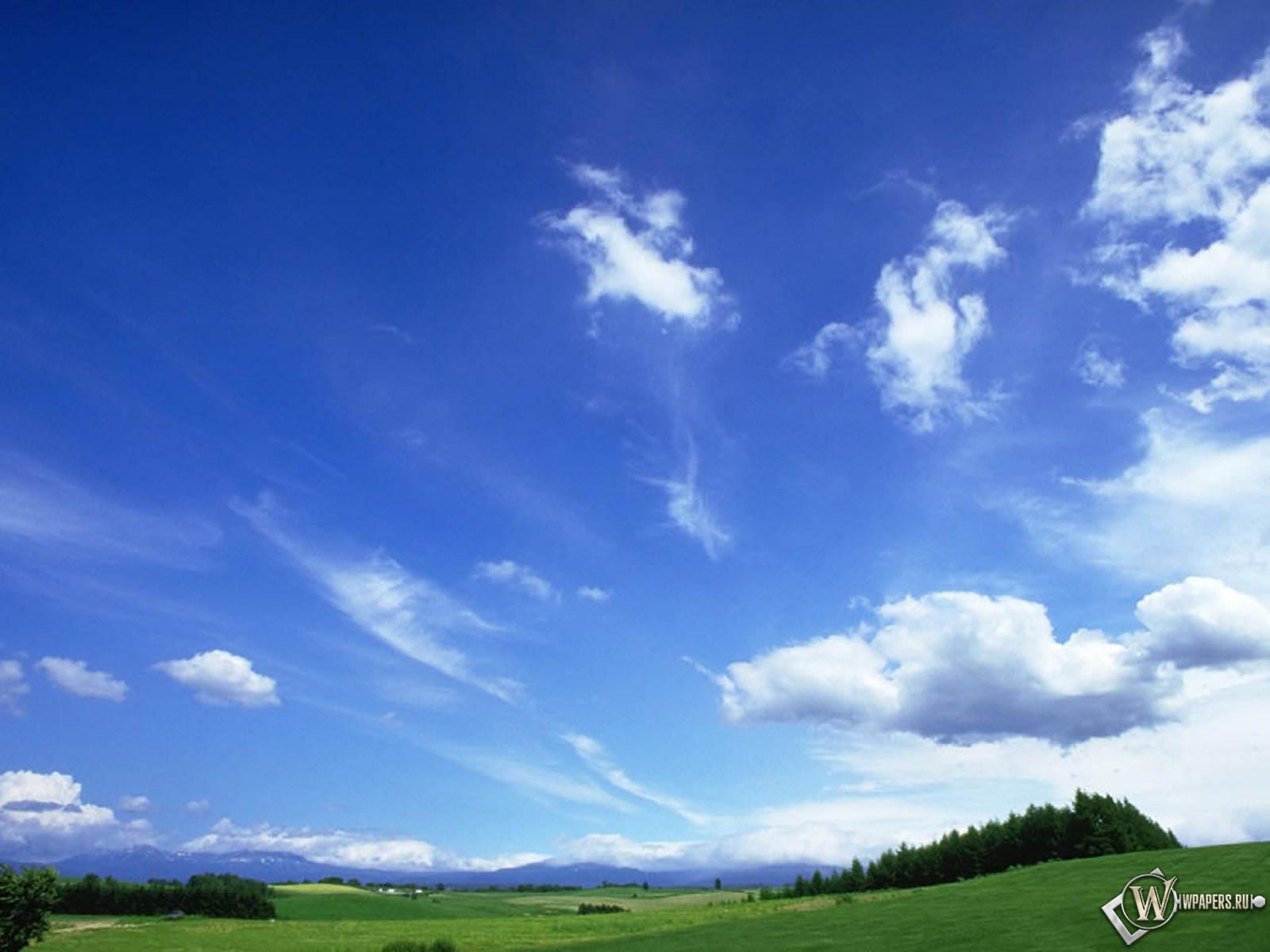 Обои небо над лужайкой 1600x1200