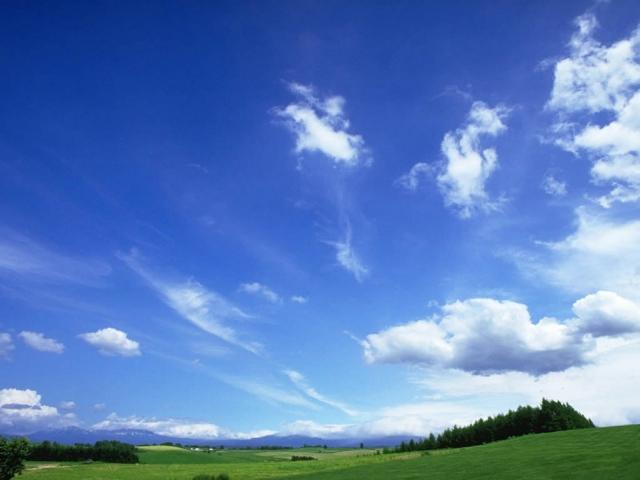 Небо над лужайкой