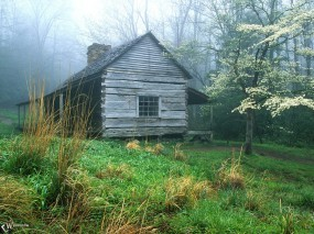 Обои Домик в лесу: , Природа