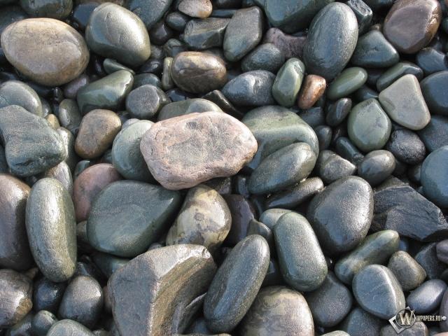 Мокрые камни