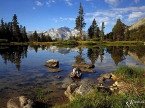 Обои Озеро в горах: Горы, Альпы, Снежные вершины, Чистая вода, Сосны, Горы
