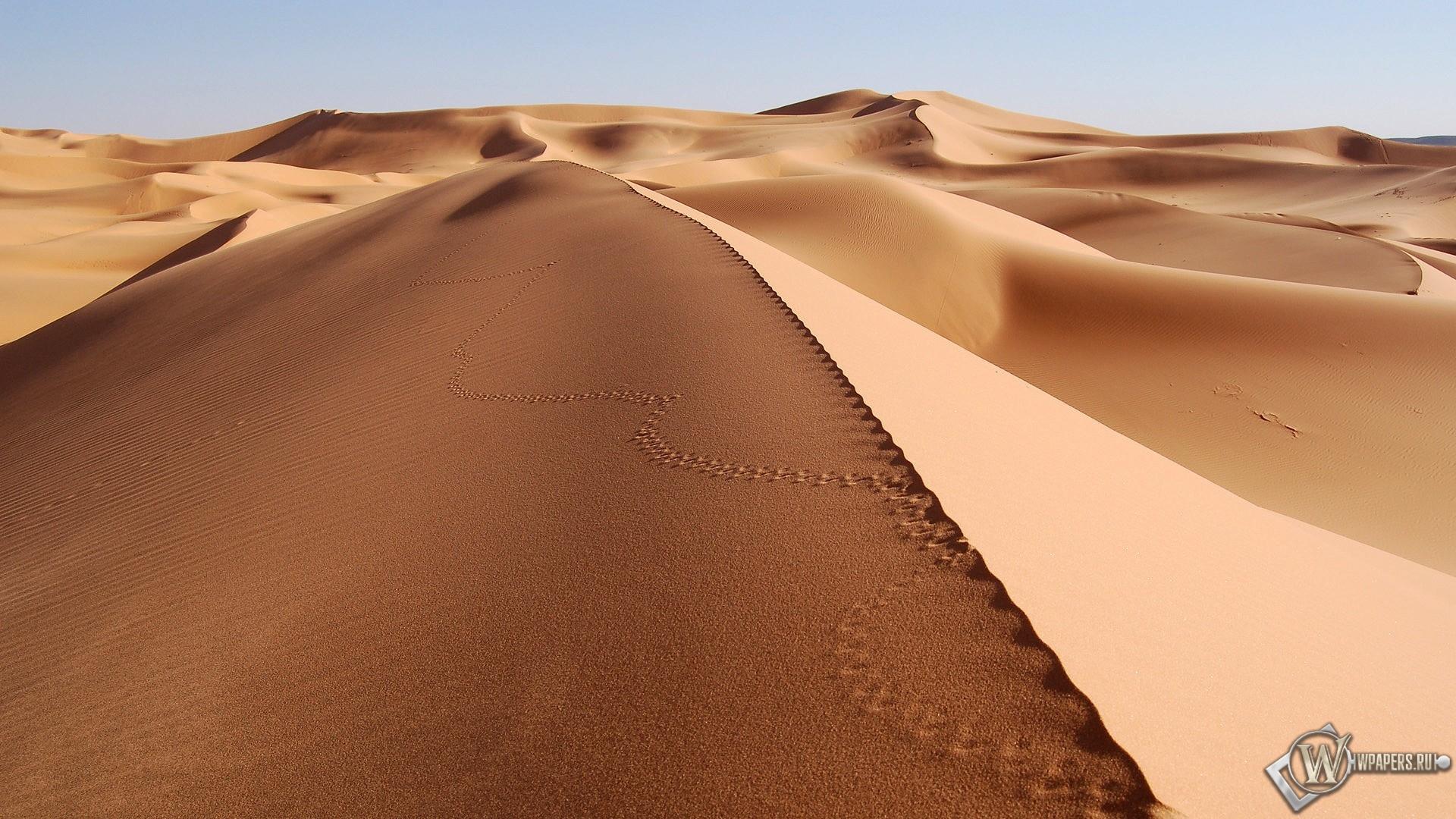 Пустыня 1920x1080