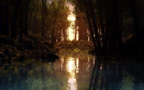 Обои Речка в лесу: Деревья, Солнце, Закат, Туман, Речка, Прочие пейзажи