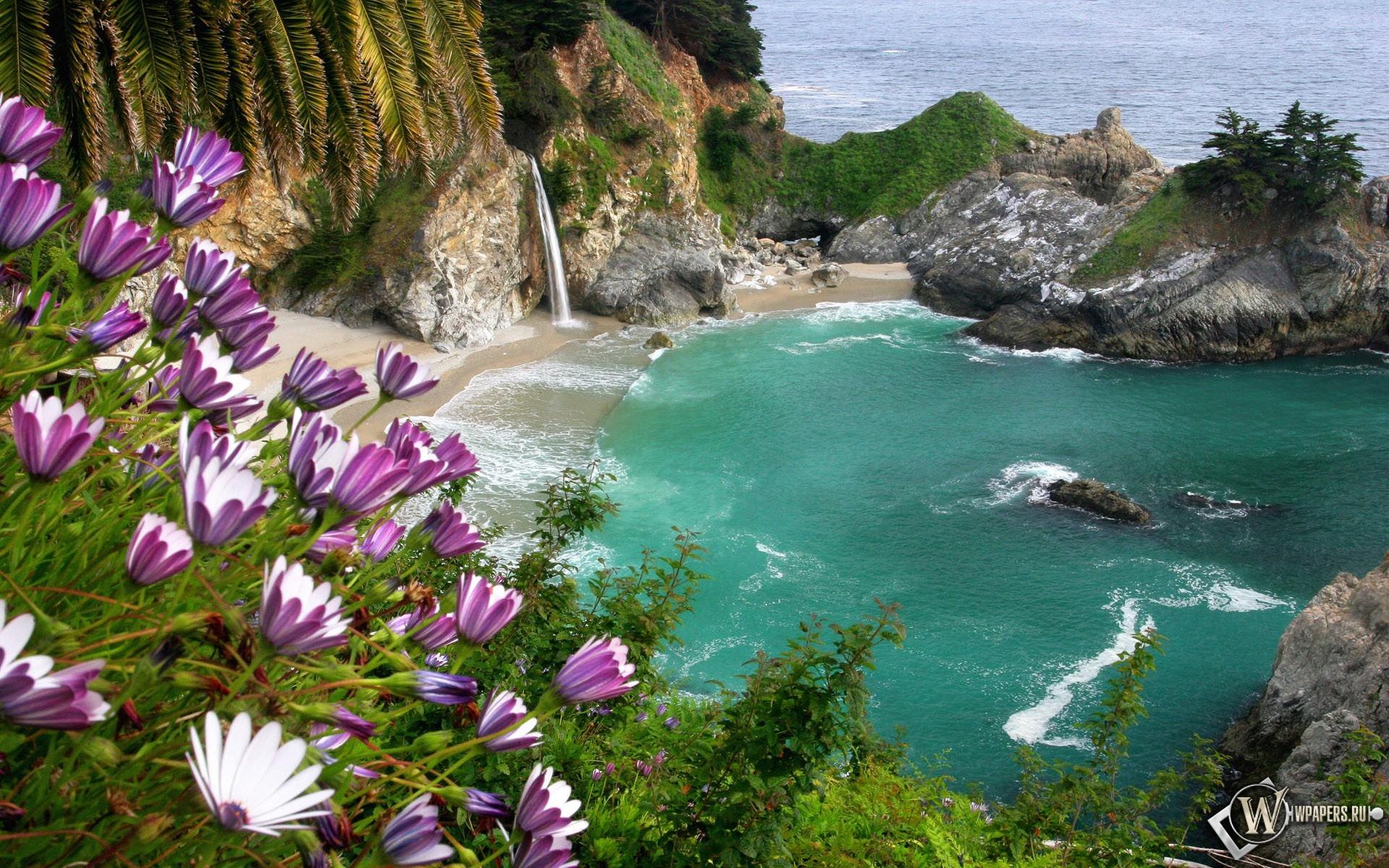 Море обоев 263 скалы обоев 55 цветы обоев