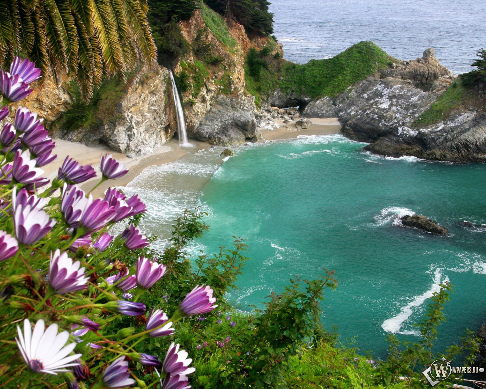 Обои залив в море море скалы цветы