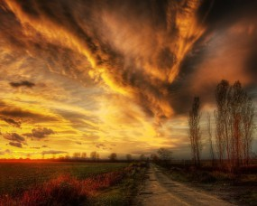 Обои Мрачная дорога: Облака, Дорога, Деревья, Тучи, Небо, Тропа, Прочие пейзажи