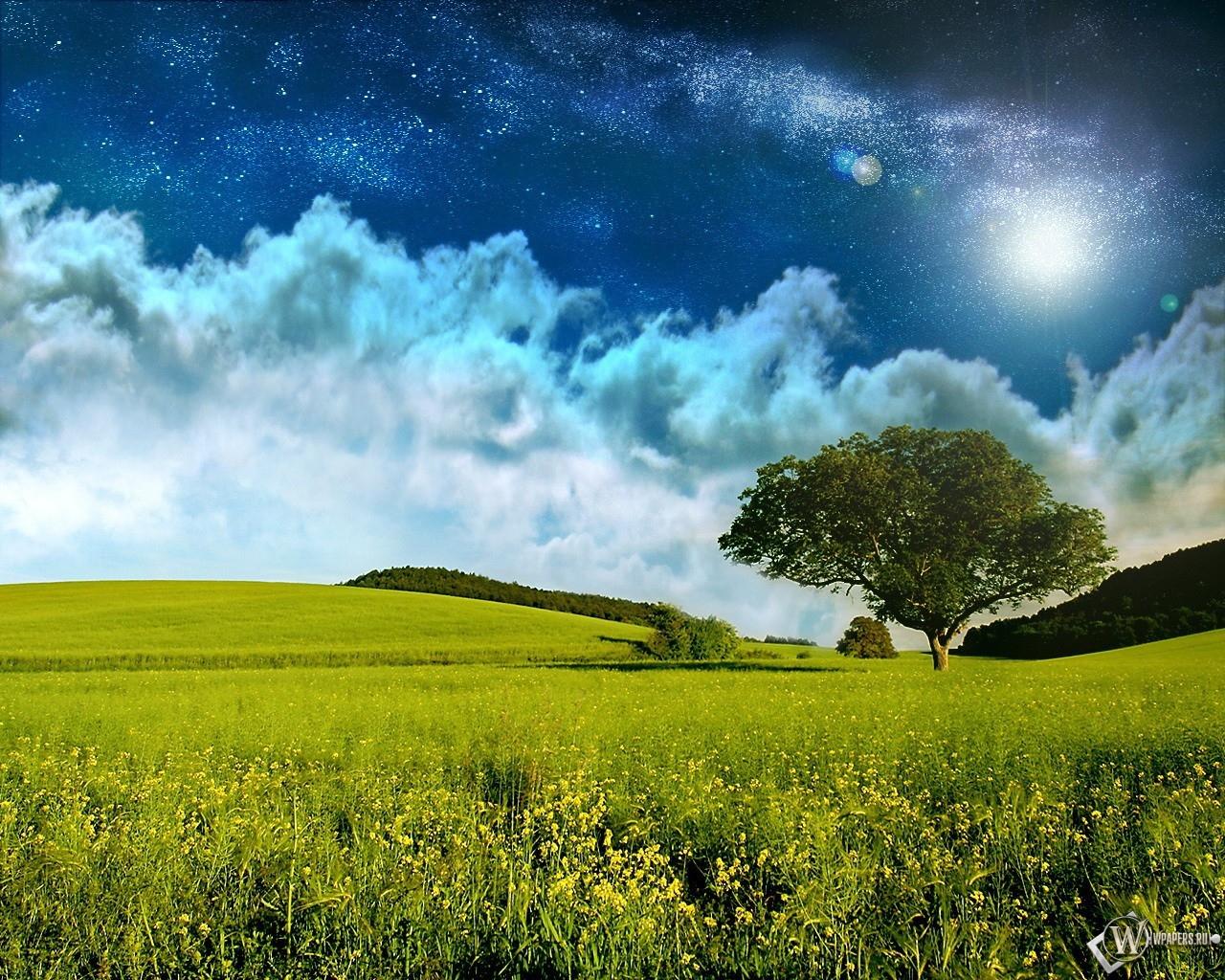 Небо над полем 1280x1024