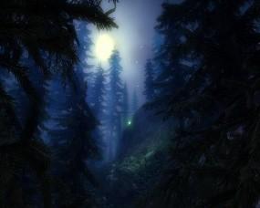 Обои Загадочный лес: Лес, Луна, Звёзды, Прочие пейзажи