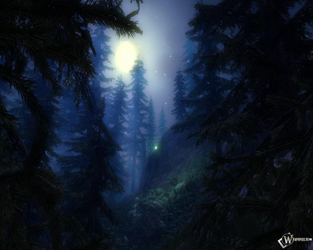Лес лес обоев 261 луна обоев 84 звёзды