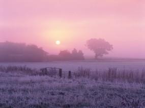 Обои Зимнее утро: Зима, Утро, Прочие пейзажи