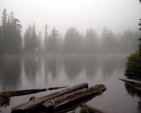 Обои Коряга на реке: Река, Туман, Коряга, Прочие пейзажи