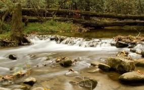 Обои Горная речка: Течение, Горная речка, Брёвна, Прочие пейзажи