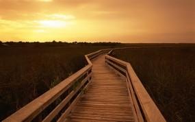 Обои Мост через поле: Мост, Поле, Прочие пейзажи