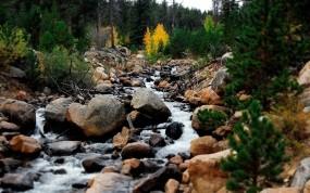 Обои Горный ручей Rocky Mountains: Горы, Вода, Камни, Ручей, Поток, Прочие пейзажи