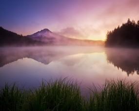 Обои Туман на озере: Туман, Озеро, Трава, Гора, Прочие пейзажи