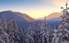 Обои Зимние горы: Зима, Горы, Снег, Деревья, Небо, Зима