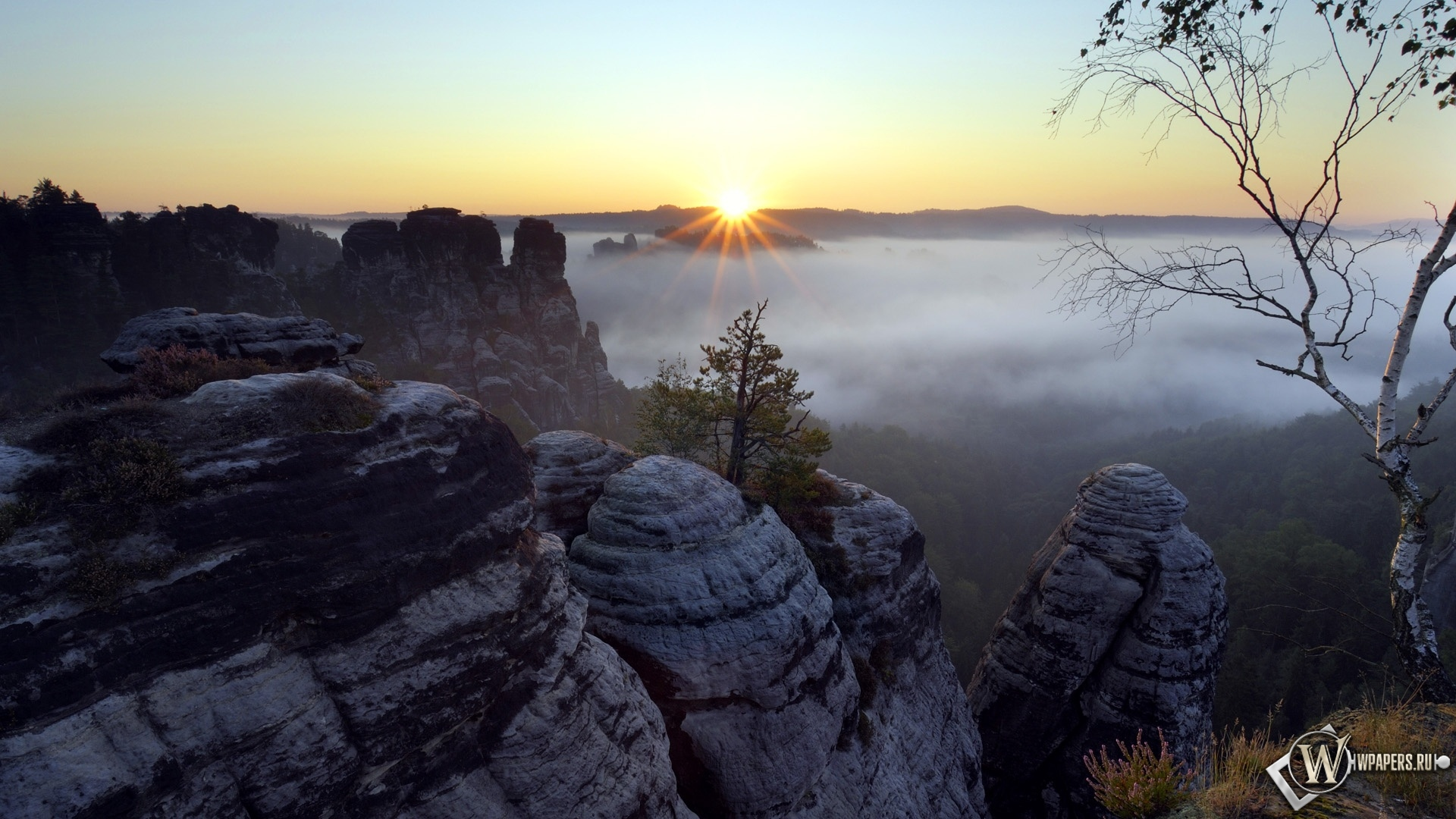 Saxon Switzerland National Park Saxony Germany 1920x1080