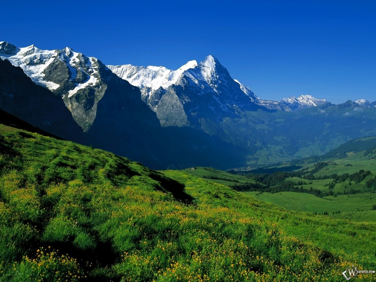 Фото природа горы