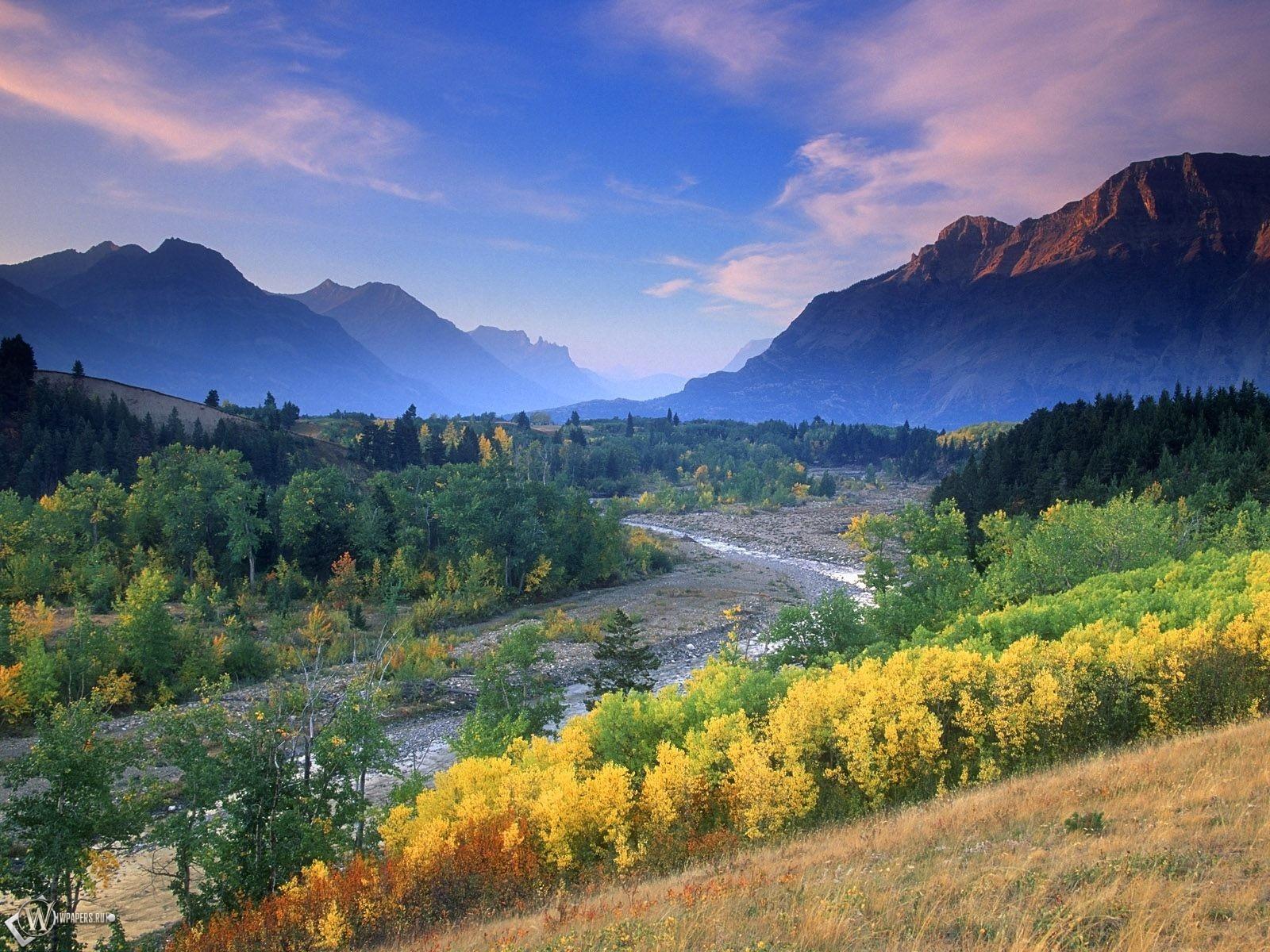 Деревья в горах 1600x1200