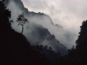 Обои Туман в горах: Горы, Пар, Туман, Природа